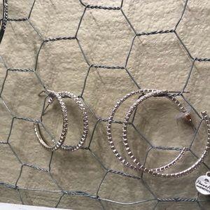 Two sized hoop earings